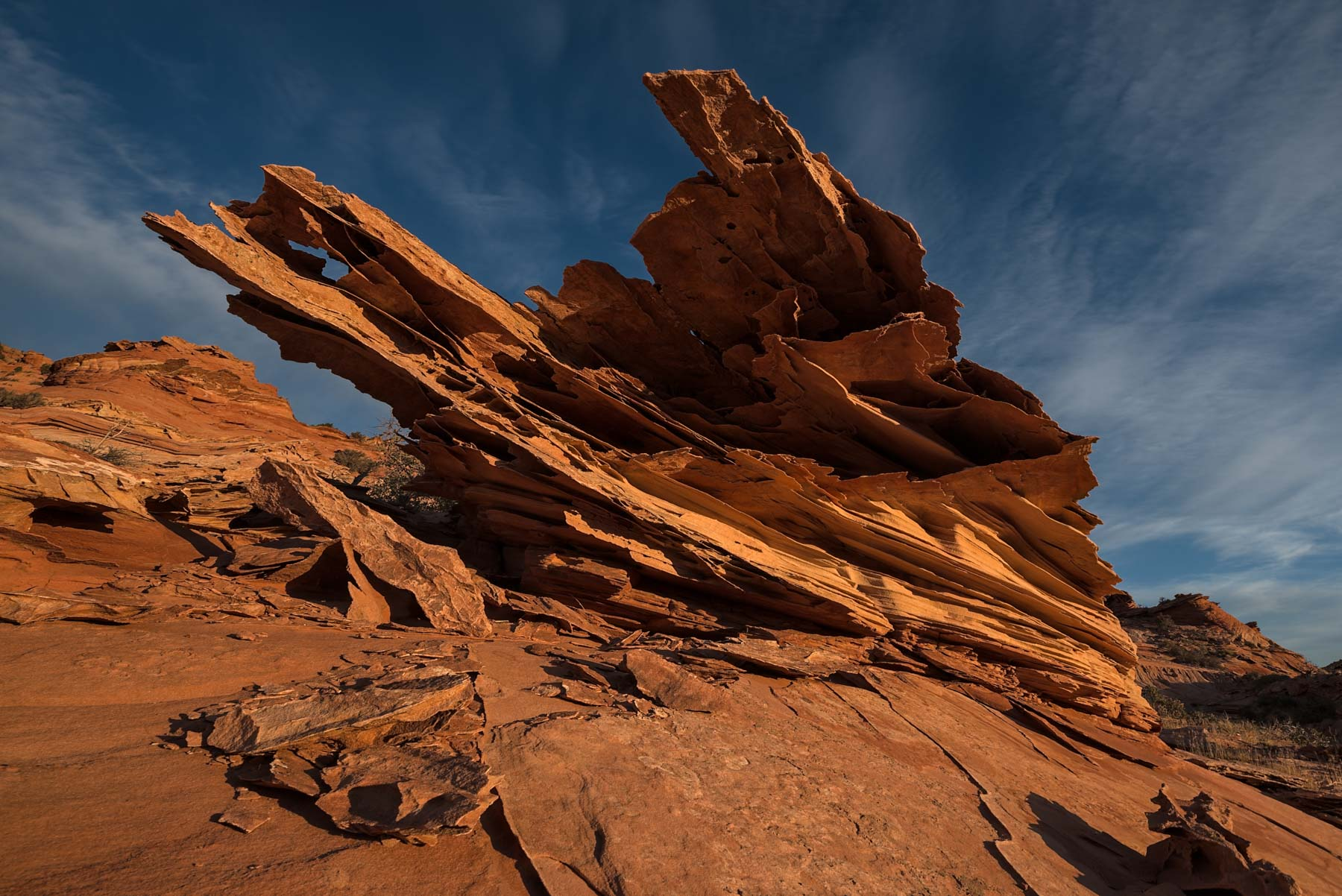 Lace Rock near The Boneyard in Coyote Buttes North, Arizona