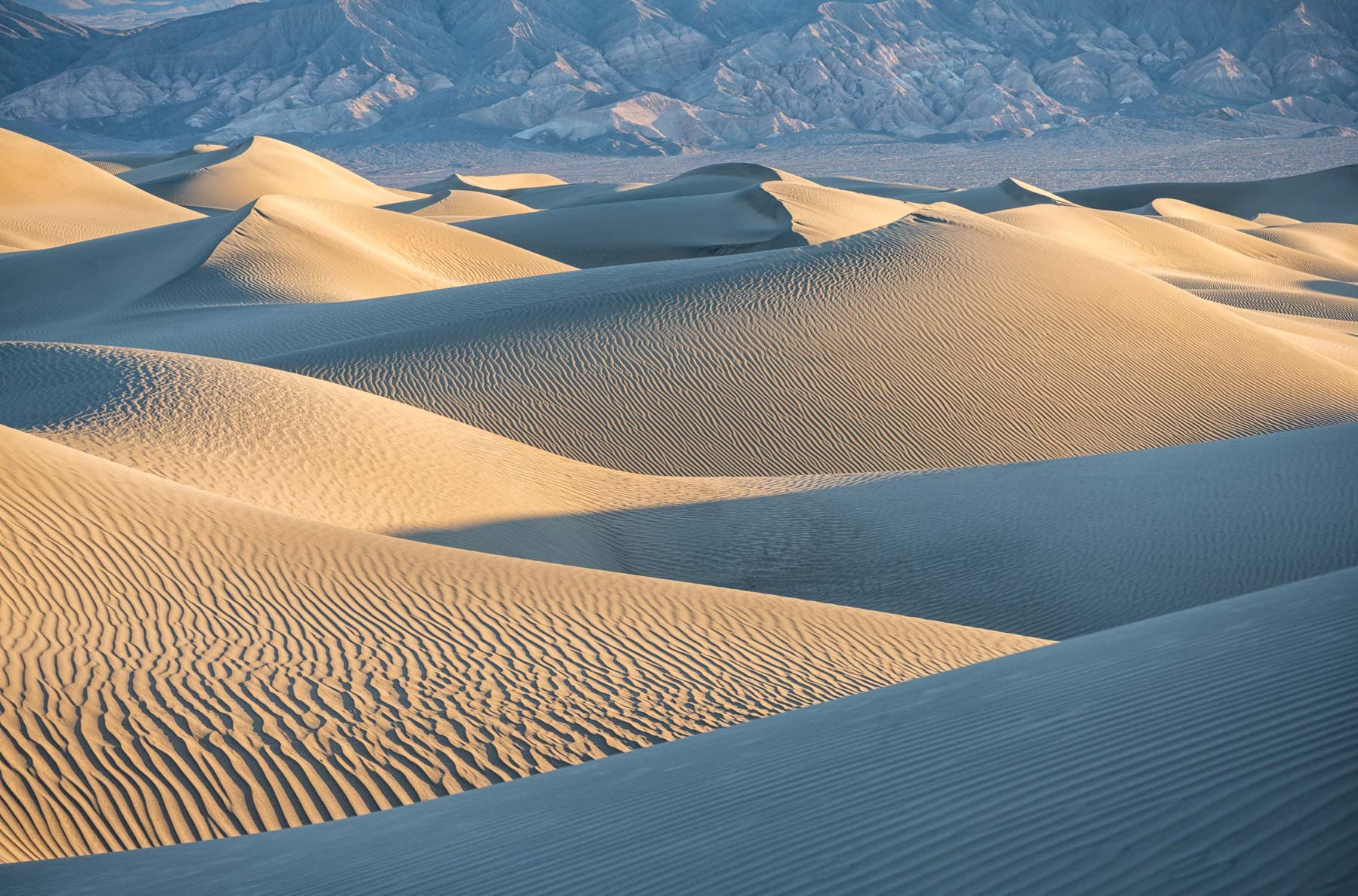 Mesquite Dunes at Dawn in Death Valley National Park, California