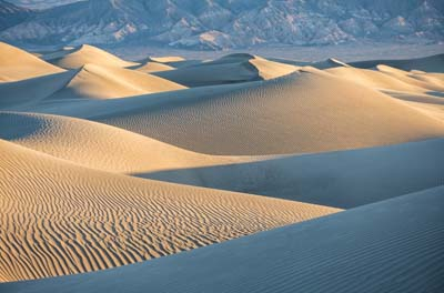 Mesquite Dunes at Dawn in Death Valley National Park